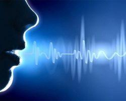 Assistenti vocali, una voce amica?