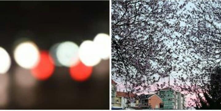 Alcune foto caricate su Instagram dai ragazzi. una raffigura delle luci indefinite, l'altra dei rami e fiori con dietro dei caseggiati.